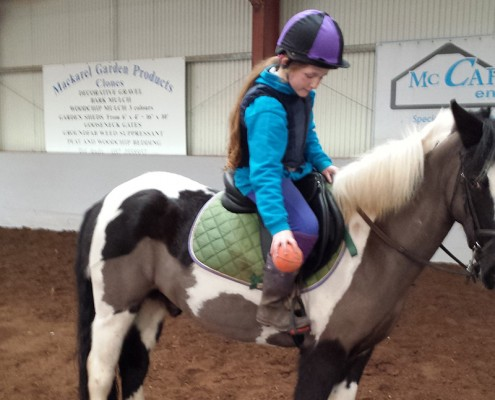 Therapeutic horse-riding lessons in Monaghan